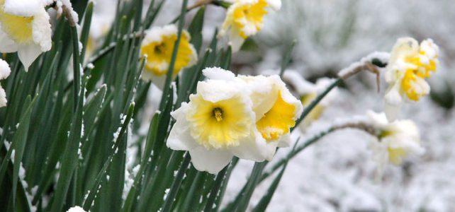 Ahhh Spring….